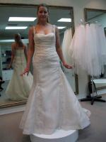 Unworn Pronovias 'Olejae' in Champagne, Wedding Dress