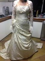 Gorgeous Pronovias Gown with Swarovski Encrusted Bolero Jacket
