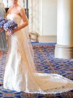 Strapless Vintage Lace Wedding Gown with Veil