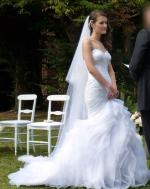Pronovias Leire Wedding Dress & Veil