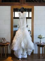 Authentic Vera Wang Gemma Bridal Gown Absolutely Beautiful